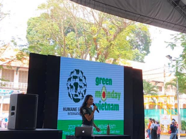 Green Monday Vietnam at Saigon Vegfest 2019